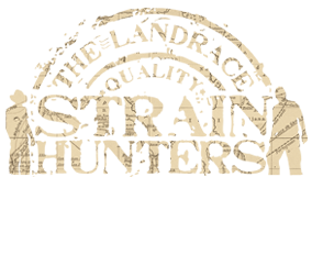 Strain Hunters Seed bank